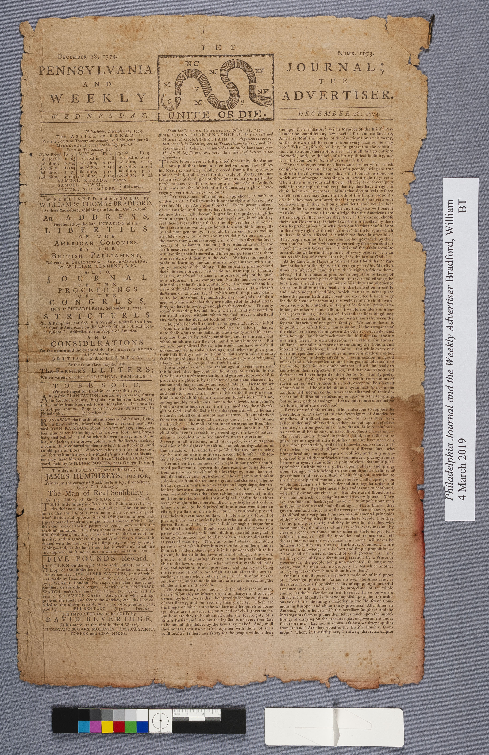 full view of newspaper with water damage