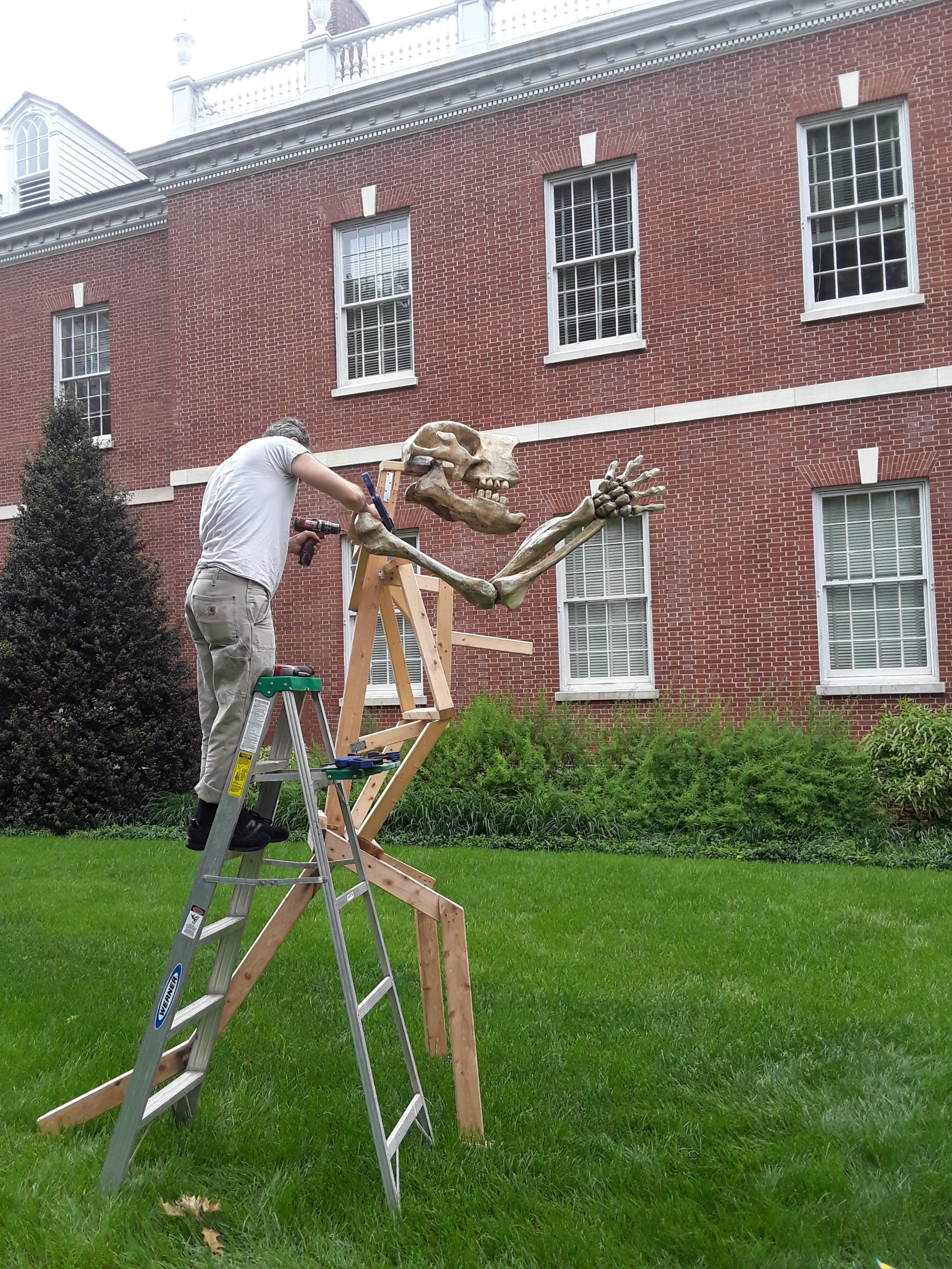 man working on skeleton sculpture