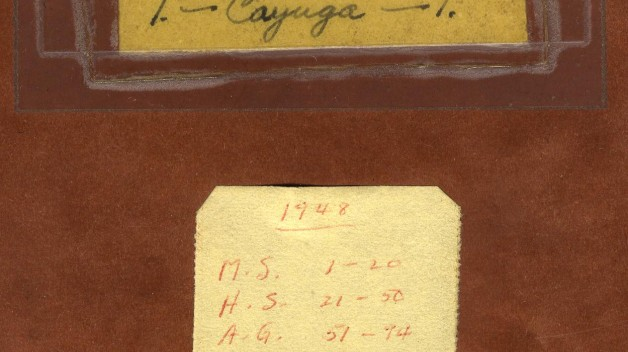 Close-up of notebook