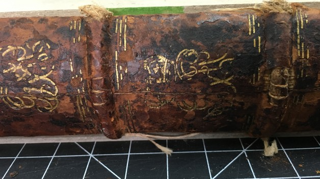 Loops of sewing thread visible through damaged leather on book spine