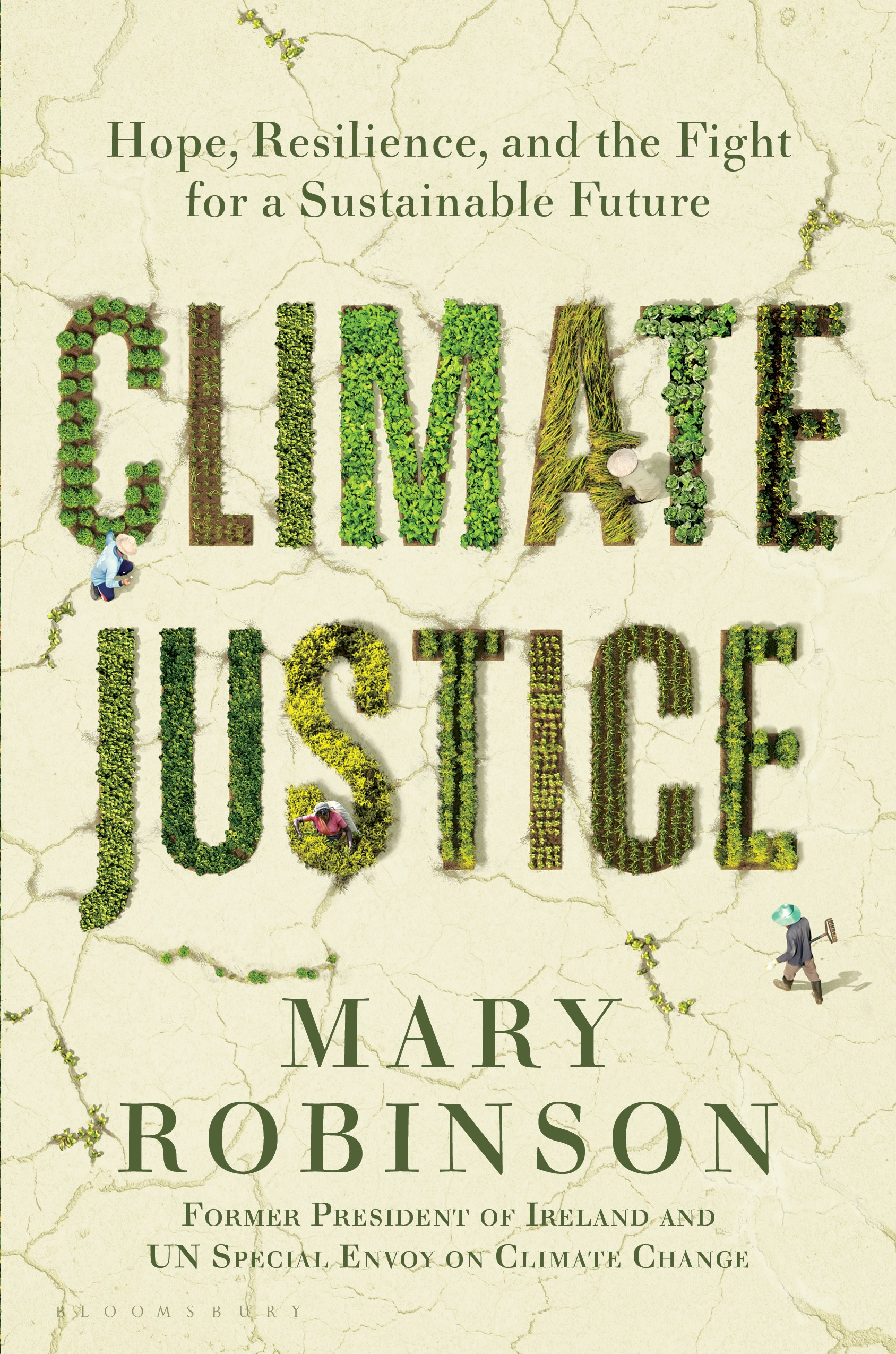 cover of book climate justice