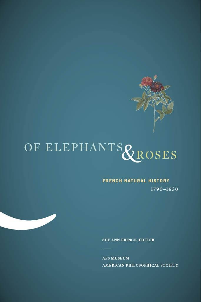 elephants and roses cover