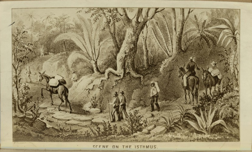 drawing of the scene on the isthmus
