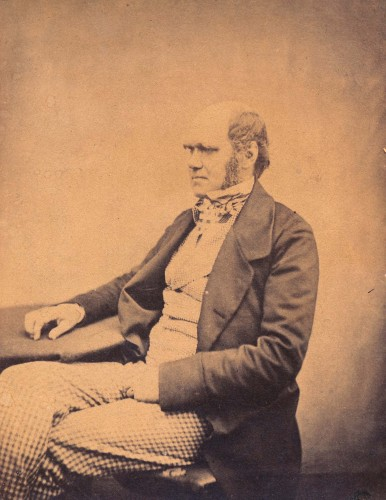 sepia toned photograph of seated man (Charles Darwin)